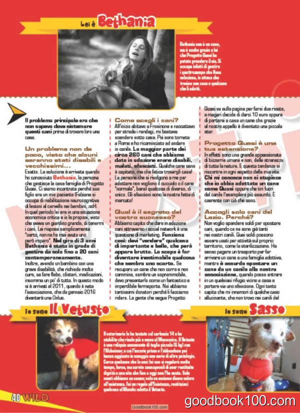Focus Wild_2016年合集PDF杂志电子版百度盘下载
