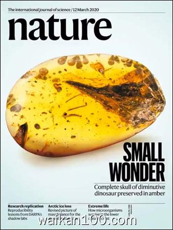 Nature 12 3月刊 2020年 [190MB]