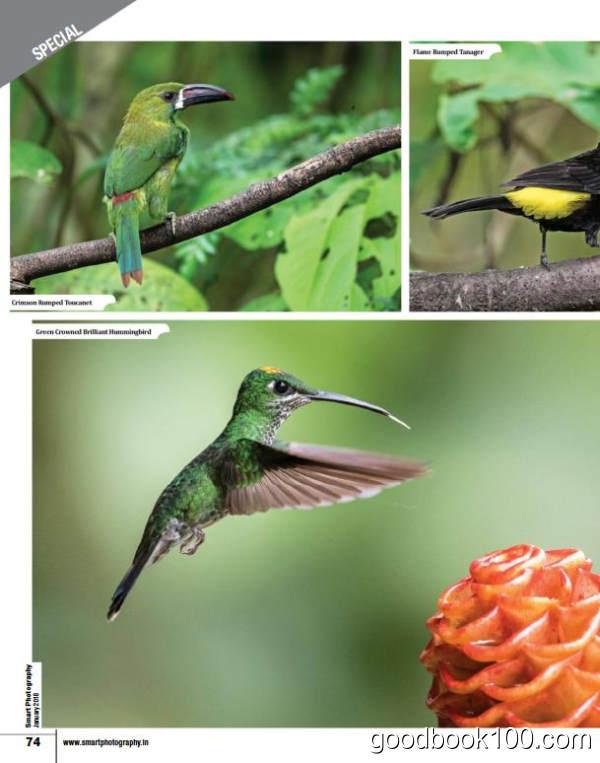 摄影类杂志_Smart Photography_2018年合集高清PDF杂志电子版百度盘下载 共12本 611MB