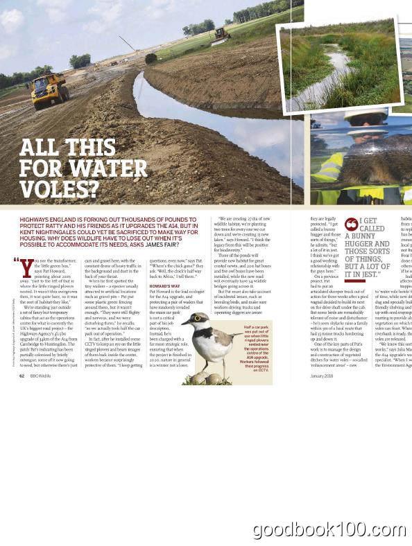 野生动物户外类杂志_BBC Wildlife_2018年合集高清PDF杂志电子版百度盘下载 共12本