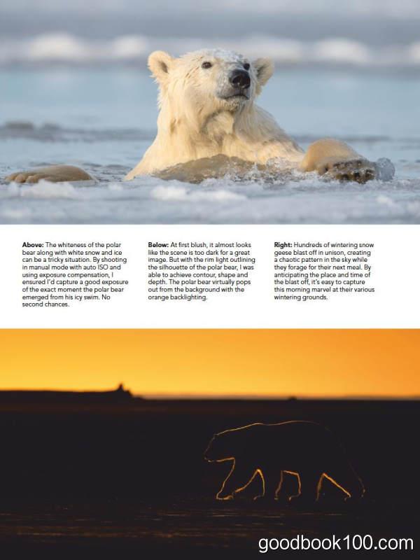 户外摄影杂志_Outdoor Photographer_2019年合集高清PDF杂志电子版百度盘下载 共11本 797MB