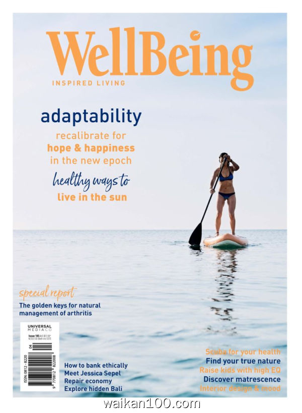 WellBeing 2月刊 2020年 [135MB]