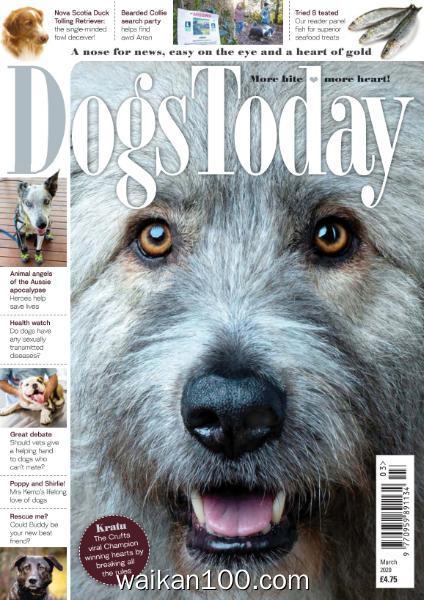 [英国版]Dogs Today 3月刊 2020年 [28MB]