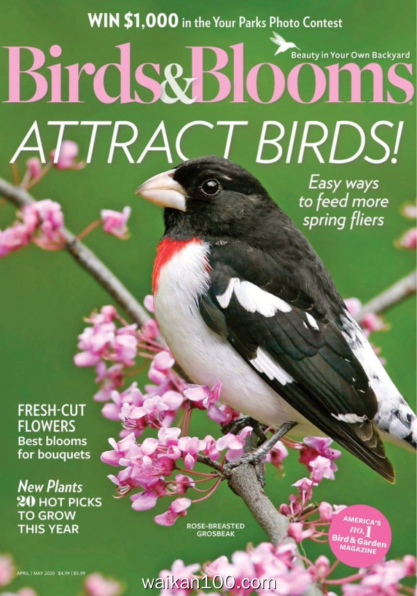Birds&Blooms 4月5月合刊 2020年 [67MB]