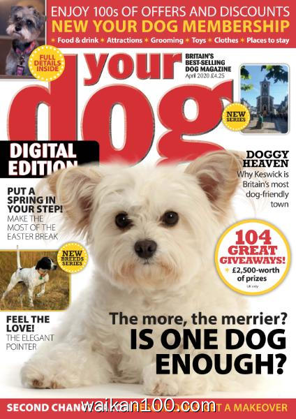 Your Dog 4月刊 2020年 [24MB]