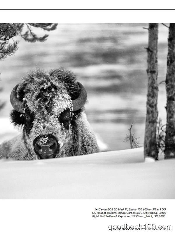 户外摄影杂志_Outdoor Photographer_2020年合集高清PDF杂志电子版百度盘下载 共11本 844MB