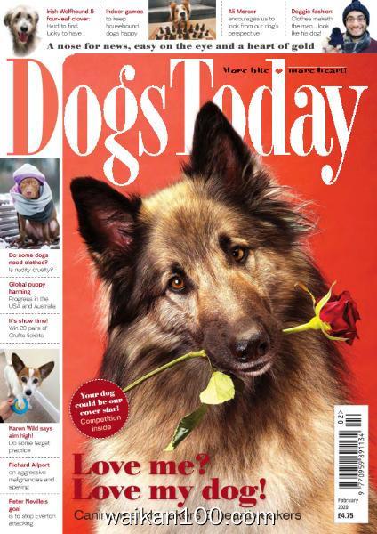 [英国版]Dogs Today 2月刊 2020年 [26MB]