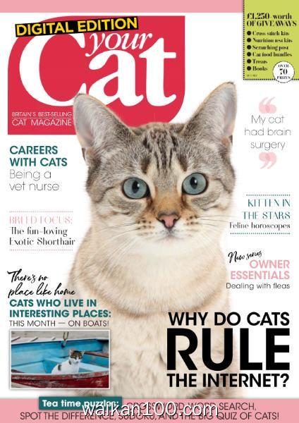 Your Cat 4月刊 2020年 [19MB]