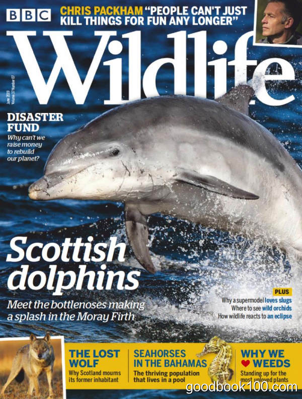摄影类杂志_BBC Wildlife_2019年合集高清PDF杂志电子版百度盘下载 共12本 797MB
