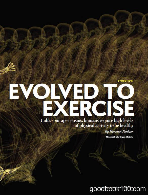 科学美国人_Scientific American_2019年合集高清PDF杂志电子版百度盘下载 共12本