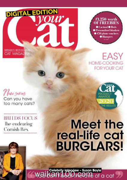 Your Cat 1月刊 2020年 [25MB]