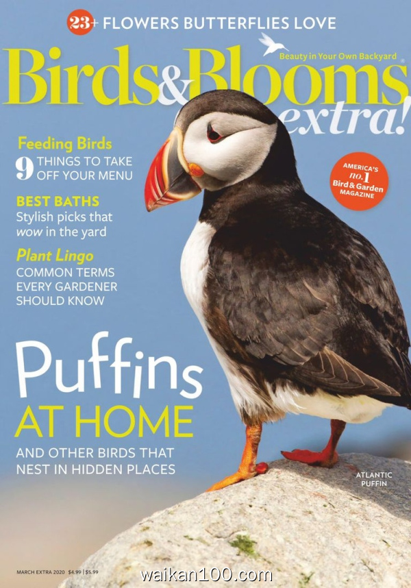 Birds and Blooms Extra 3月刊 01 2020年 [24MB]