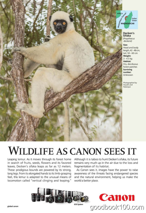 National_Geographic_UK_-_February_2020英文原版高清PDF电子杂志下载