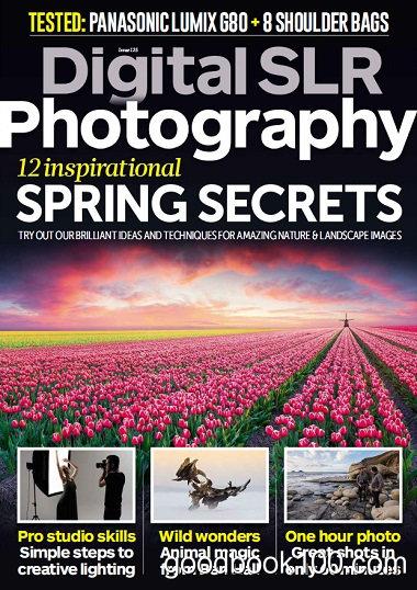 Digital SLR Photography – April 2017