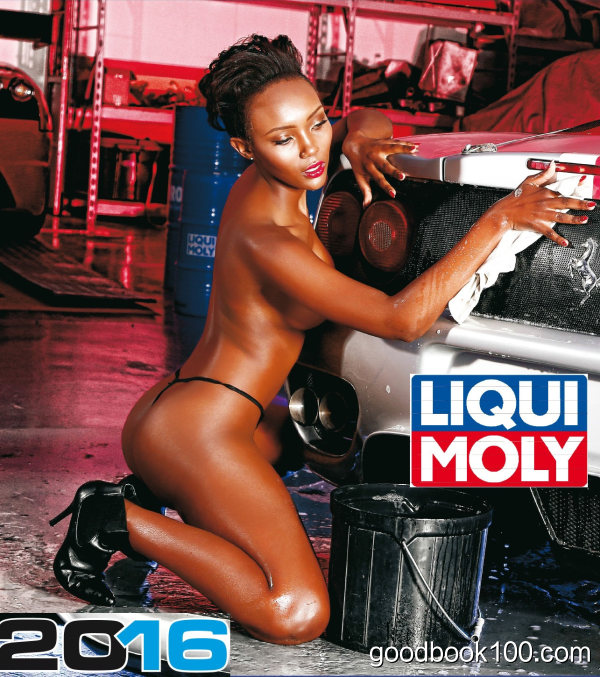 Liqui Moly – Official Calendar 2016 Version 1