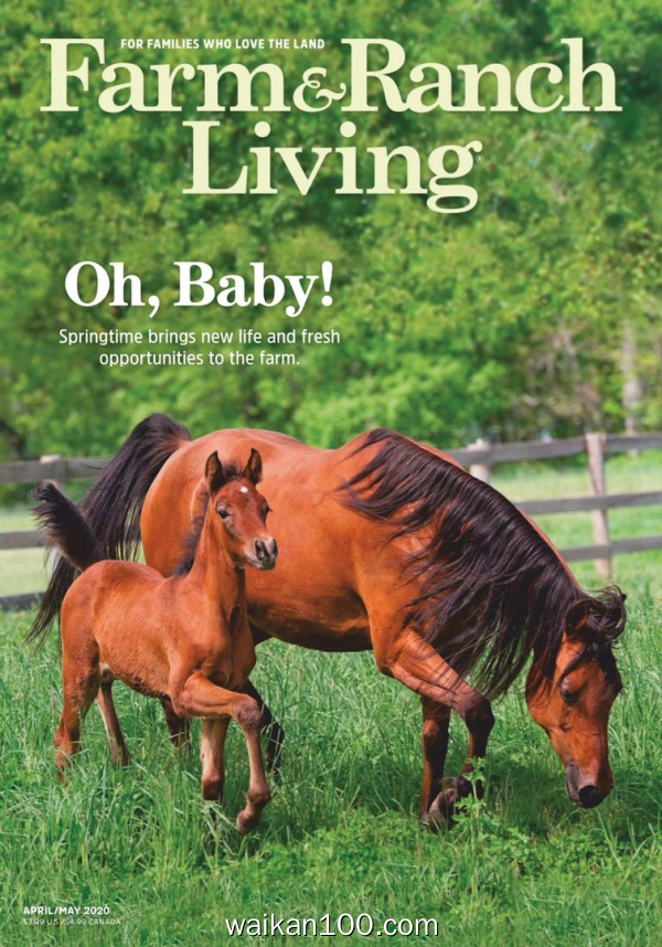 Farm&Ranch Living 4月刊 2020年 [35MB]