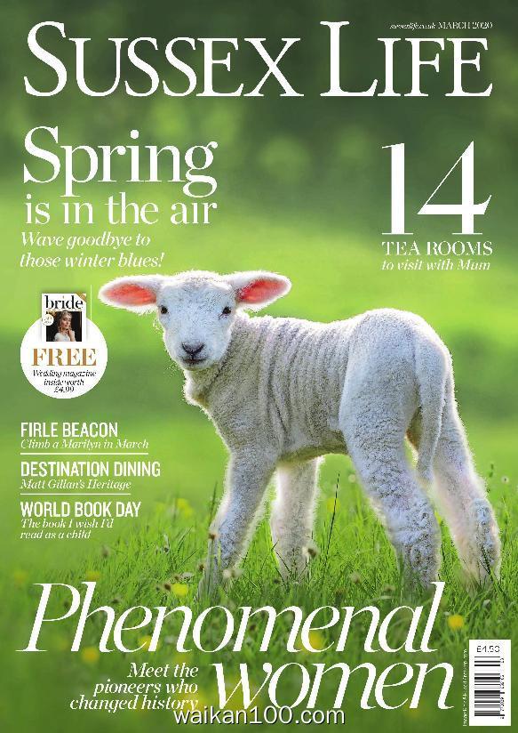 Sussex Life 3月刊 2020年高清PDF电子杂志外刊期刊下载英文原版
