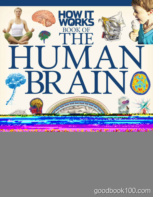How It Works – The Human Brain, 1st Edition