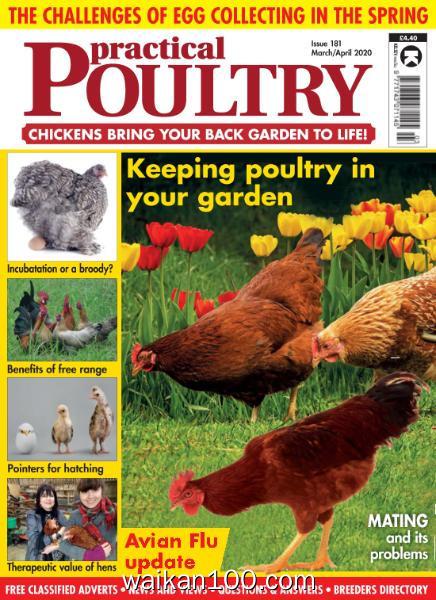 Practical Poultry 总期数No.181 3月4月合刊 2020年高清PDF电子杂志外刊期刊下载英文原版