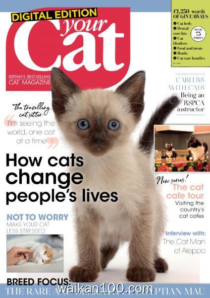 Your Cat 3月刊 2020年 [21MB]