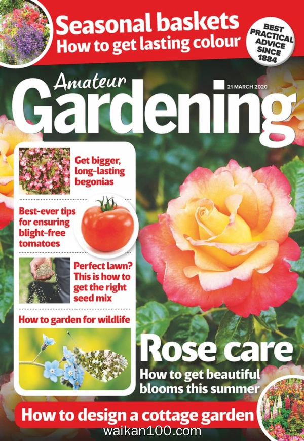 Amateur Gardening 21 3月刊 2020年 [70MB]