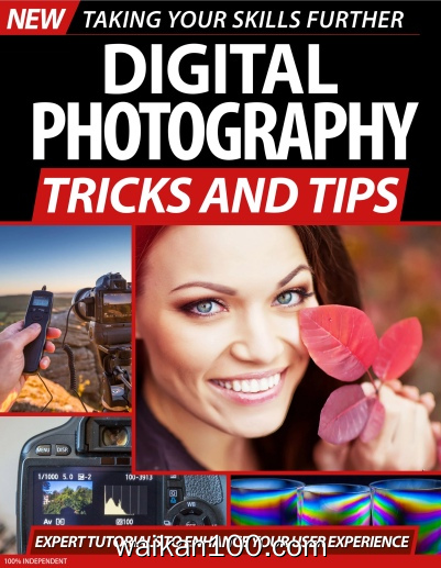 Digital Photography Tricks and Tips 2 Ed 2020年 [118MB]