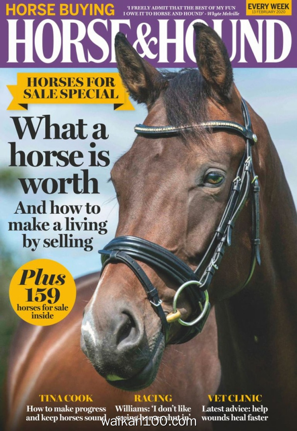 Horse&Hound 13 2月刊 2020年高清PDF电子杂志外刊期刊下载英文原版