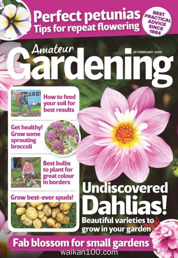 Amateur Gardening 29 2月刊 2020年高清PDF电子杂志外刊期刊下载英文原版